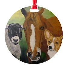 Sarahs Pets 3 Ornament