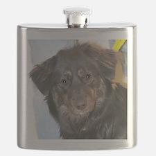 Australian Shepherd Photo Flask