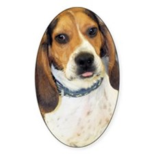 basset-photo2 Decal