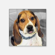 "basset5.25 Square Sticker 3"" x 3"""