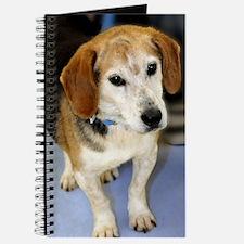 beagle10x14 Journal
