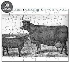 cal11_13 Puzzle