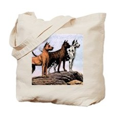 3 great danes mens wallet copy Tote Bag