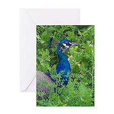 4135-journal Greeting Card