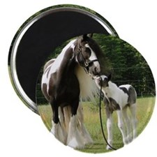 Dated with foal final Magnet