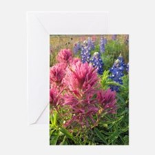 texas bluebonnets and pinks Greeting Card