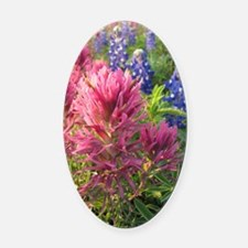 texas bluebonnets and pinks Oval Car Magnet