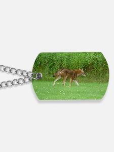 CO14.7x9.67 Dog Tags