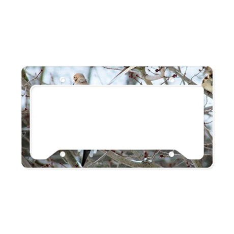 MD14.7x9.67SF License Plate Holder