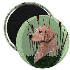 Golden Retriever & bullrushes Magnet
