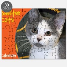 Shelter Cats Puzzle