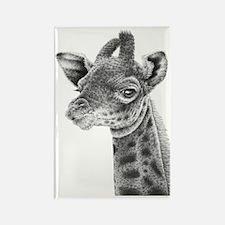 Giraffe Calf (Kindle Sleeve) Rectangle Magnet