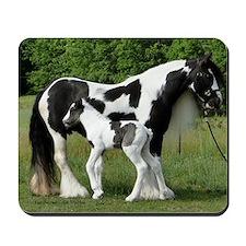 Calendar Chavali and foal Mousepad