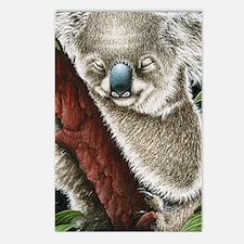 3G Koala Sleeping (iphone Postcards (Package of 8)