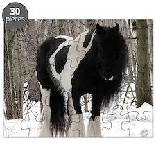 Novel Winter Sq Puzzle