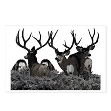 Monster buck deer Postcards (Package of 8)