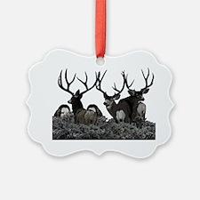 Monster buck deer Ornament