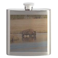 IMG_5281 Flask