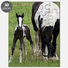 Rhiannon Puzzle