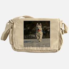 vert_cal_jan Messenger Bag