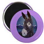 Donkey - Jack Ass Magnet