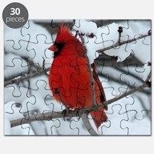 CaWn4.25x4.25SF Puzzle