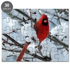 CAWnt4.25x4.25SF Puzzle
