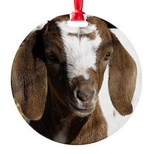 Cute kid goat Ornament