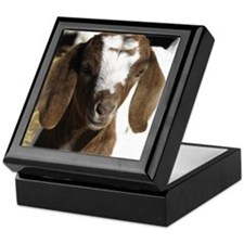 Cute kid goat Keepsake Box