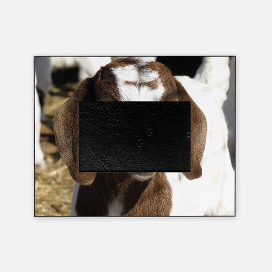 Cute kid goat Picture Frame