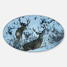 Bucks in snow 2 Decal
