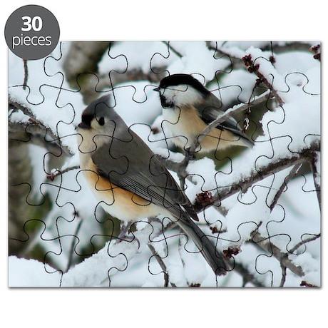TT4.25x4.25 Puzzle