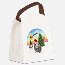 R-TakeOff-GuineaPig2 Canvas Lunch Bag