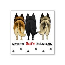"BelgianButtsNew Square Sticker 3"" x 3"""