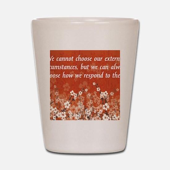 external_circumstances-112011 Shot Glass