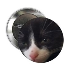"kitty 2.25"" Button"