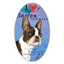 boston-iPad1 Decal