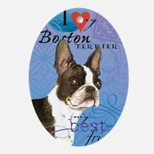 boston-iPad1 Oval Ornament