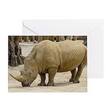rhino 1 Greeting Card