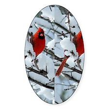 Cardinal Winter Decal
