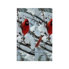 Cardinal Winter Rectangle Magnet