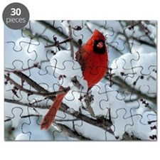 CAWn9.25x7.75SF Puzzle