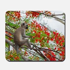 greeting-card Mousepad