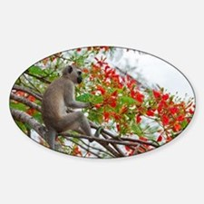 greeting-card Sticker (Oval)