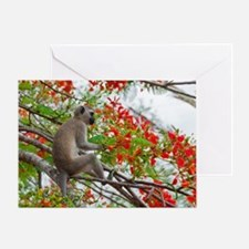 small-poster Greeting Card