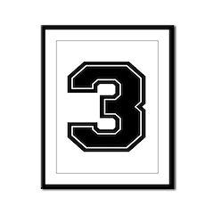 3 Framed Panel Print