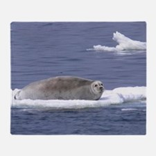 bearded seal on ice Throw Blanket