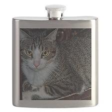 Casper-1 Flask