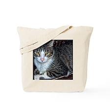 Casper-1 Tote Bag