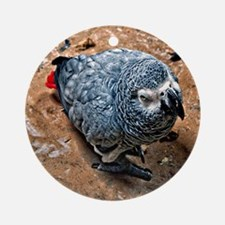 African Gray Parrot Round Ornament